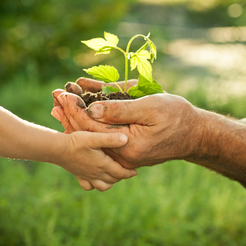 Elder man and child holding a new plant representing a new outlook on life